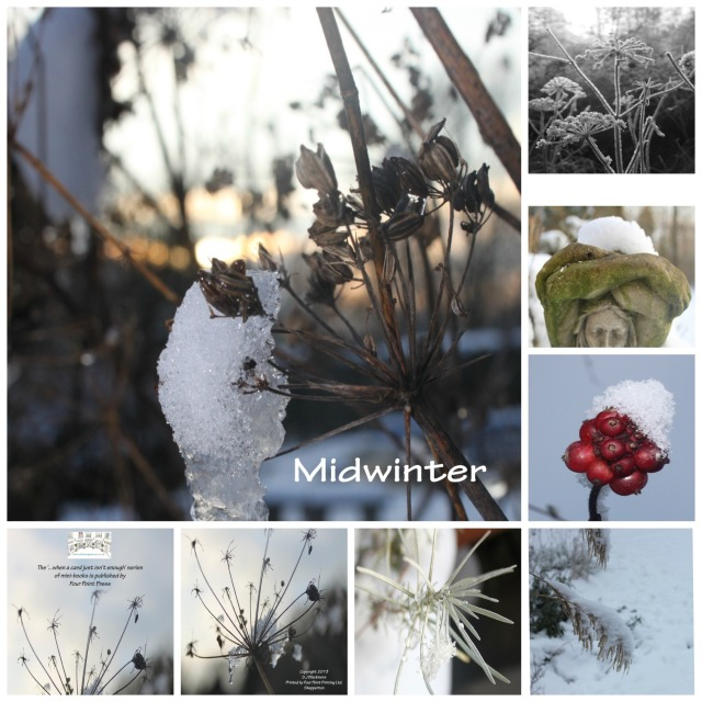 Midwinter collage